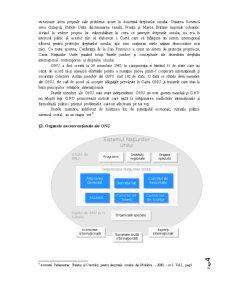 Cadrul Instituțional al ONU în Materia Drepturilor Omului - Pagina 4
