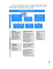 Cadrul Instituțional al ONU în Materia Drepturilor Omului - Pagina 5