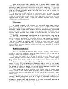 Celula Animala - Pagina 2