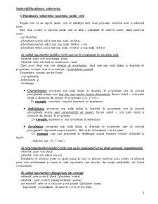 Raportul Juridic Civil - Pagina 3