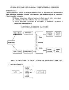 Analiza economico-financiară a Întreprinderilor de Turism - Pagina 1