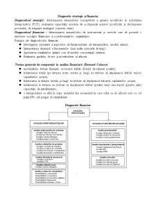 Analiza economico-financiară a Întreprinderilor de Turism - Pagina 5