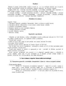 Misiunea de Examinare a Contabilitatii, Intocmirea si Prezentarea Situatiilor Financiare - Pagina 2