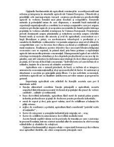 Analiza Eficientei Economice a Productiei Agricole si Cai de Crestere a Acesteia - SC Romagribuz - Pagina 2