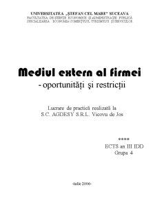 Mediul Extern al SC Agdesy SRL - Oportunitati si Restrictii - Pagina 1