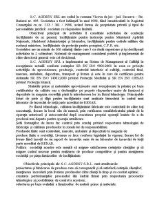 Mediul Extern al SC Agdesy SRL - Oportunitati si Restrictii - Pagina 4