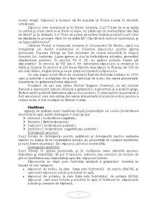 Procese Tehnologice de Obținere a Săpunului - Pagina 3