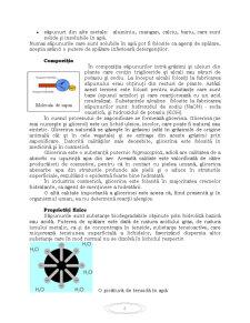 Procese Tehnologice de Obținere a Săpunului - Pagina 4