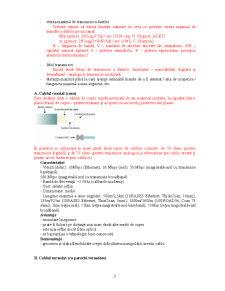 Retele de Calculatoare - Nivel Fizic - Pagina 2