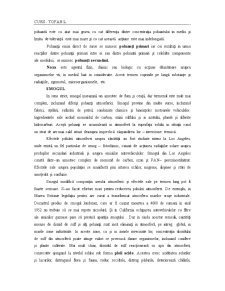 Curs Atmosfera - Pagina 2