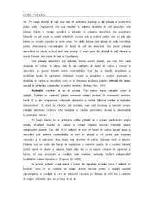 Curs Atmosfera - Pagina 3