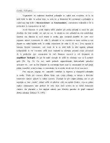 Curs Atmosfera - Pagina 5