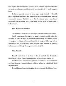 Pregatirea Salonului in Vederea Deschiderii si Primirii Consumatorilor - Pagina 5