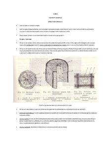 Lemn - Pagina 1