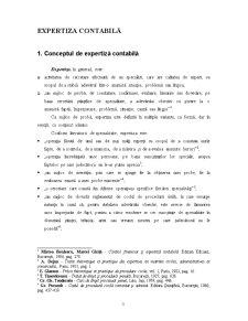 Expertiza Contabilă - Pagina 3