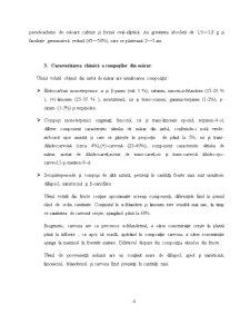 Mararul ca Planta Aromatica - Pagina 4