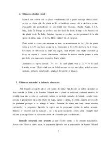 Mararul ca Planta Aromatica - Pagina 5
