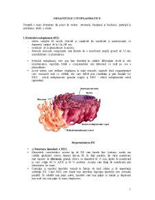 Organite Citoplasmatice - Pagina 1