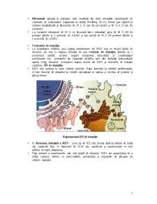 Organite Citoplasmatice - Pagina 2