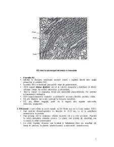 Organite Citoplasmatice - Pagina 3