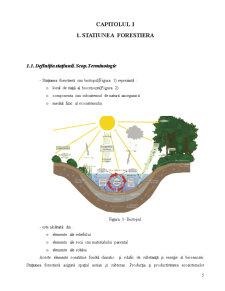 Componentele Statiunii Forestiere - Pagina 3