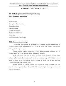 Biologia Speciei Ribes Rubrum - Coacaz Rosu - Pagina 1