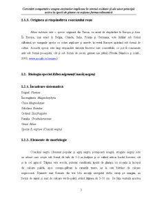 Biologia Speciei Ribes Rubrum - Coacaz Rosu - Pagina 3