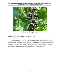Biologia Speciei Ribes Rubrum - Coacaz Rosu - Pagina 5