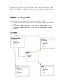 Cursoare SQL Server 2008 - Pagina 3