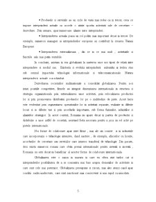 Intreprinderea in Era Globalizarii - Pagina 5