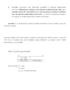 Introducere în Știința Contabilității - Pagina 3