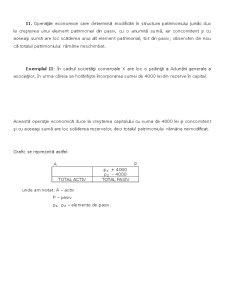 Introducere în Știința Contabilității - Pagina 5