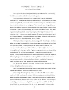 Dăunătorii Plantelor Agricole - Pagina 2