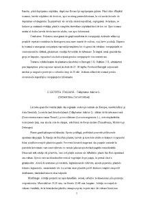 Dăunătorii Plantelor Agricole - Pagina 3