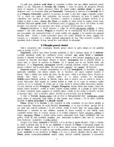 Filosofia Dreptului - Pagina 5