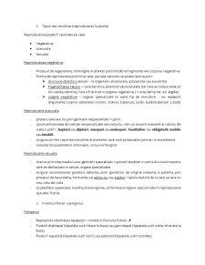 Tipuri de Inmultire - Pagina 1