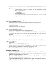 Tipuri de Inmultire - Pagina 4