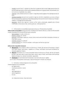 Tipuri de Inmultire - Pagina 5