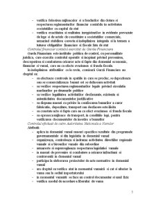 Controlul Financiar-Contabil - Pagina 5