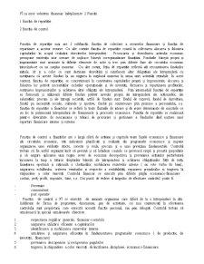 Finanțele Întreprinderii - Pagina 2