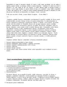Finanțele Întreprinderii - Pagina 3