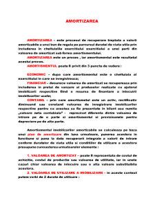 Amortizarea - Pagina 1