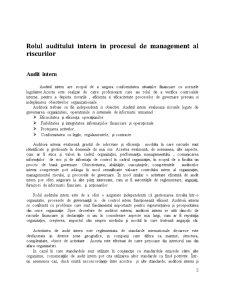 Rolul Auditului Intern în Procesul de Management al Riscurilor - Pagina 2