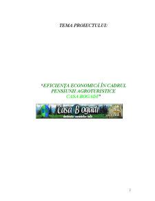Eficiența Economică în Cadrul Pensiunii Agroturistice Casa Bogadi - Pagina 2