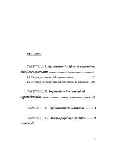 Eficiența Economică în Cadrul Pensiunii Agroturistice Casa Bogadi - Pagina 3