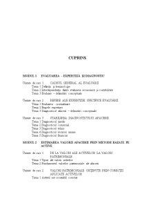 Evaluarea Afacerilor - Pagina 2