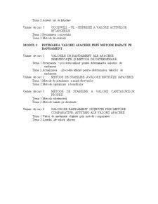 Evaluarea Afacerilor - Pagina 3