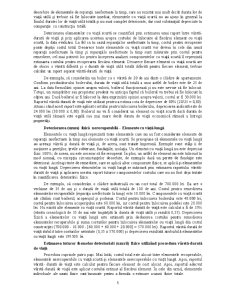 Deprecierea în Evaluarea Bunurilor - Pagina 5