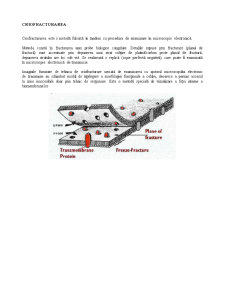 Criofracturarea - Pagina 1
