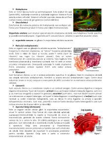 Celula, Unitatea Structurala si Genetica a Organismului - Pagina 3